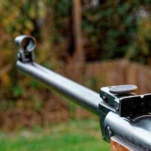 Jagd- und Wurftaubenschießen